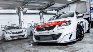 Značkový pohár pro Peugeot 308 Racing Cup
