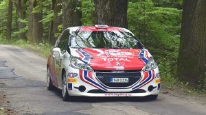 Pojede se Peugeot Total Rally Cup i v roce 2018?
